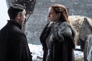 703 Sansa und Petyr.jpg