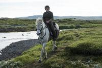 Арья на лошади 4x10