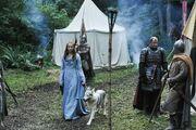 102 Sansa Stark und Lady