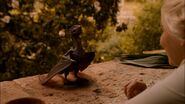 Drogon eats