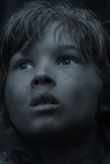 Winterfell Boy