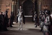 210 Tywin Pferd