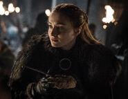 802 Sansa Stark