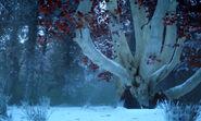 Bosque sagrado s7 Bran e Sansa