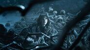 410 Bran