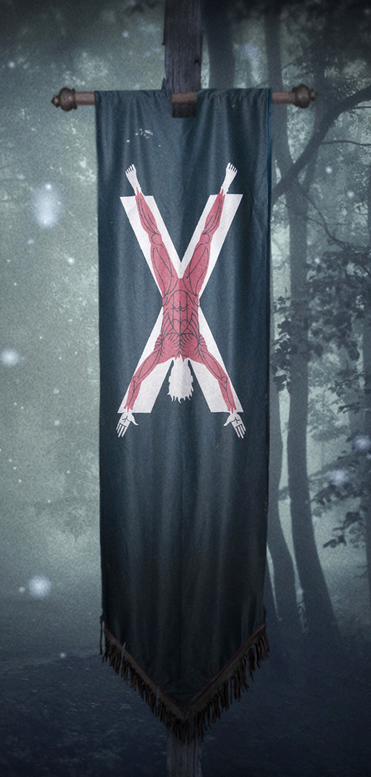 Bolton banner.jpg