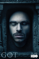 Poster S6 Robb Stark