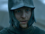 Baratheon soldier (The Dance of Dragons)