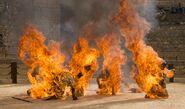 509 brennende Söhne der Harpye