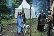 Sansa in the Camp