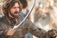 509 Daario