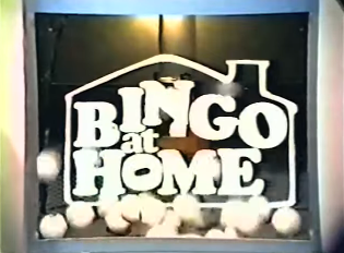 Bingo at Home (2)