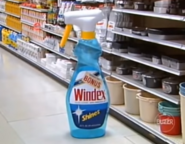 Inflatable Windex Bonus