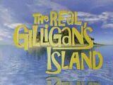 Real gilligans island.jpg