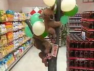 Koala Bonus