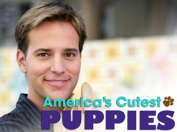 America's Cutest Puppies