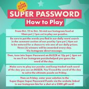 Super Duper Super Password How to Play