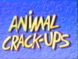 Animal Crack-Ups