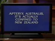 John Doe Jeopardy! Scene 2