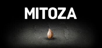 Mitoza.jpg