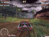 Rally 5.jpg