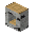 Birch Wood Hollow Cover Slab (RP2).png