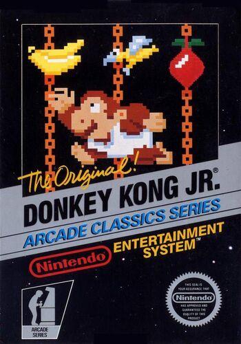 Donkeykongjr.jpg