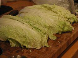 Chinese Cabbage.jpg
