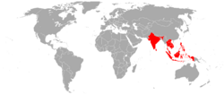 Bird's eye chilli geographical distribution.PNG