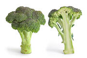 Broccoli and cross .jpg