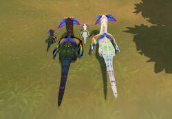 Kozita Rainbow Dragon back Katnip