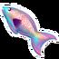 Rainbow Parrot Fish