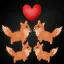 Foxy Master