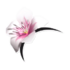 Head Blossom