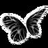 Shadow Butterfly Wings