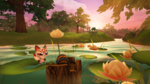 Garden Paws - Lily Pond Chest