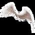 Angel Glider