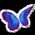 Galaxy Butterfly Wings