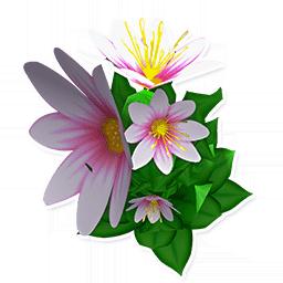 White Flower Bush