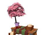 Fruit Tree Shop