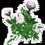 Decorative White Rose