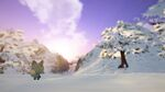 Garden Paws - Winter