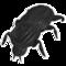 Beetle Black