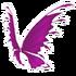 Pink Fairy Wings