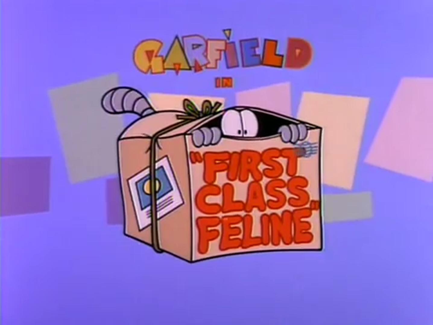 First Class Feline
