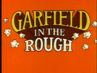Garfieldintheroughtitle.PNG