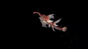 Small Makai Dragons.png