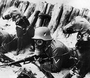 Men-and-Dogs-in-Gas-Masks-German-WWI