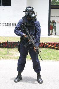 Polis-malaysia