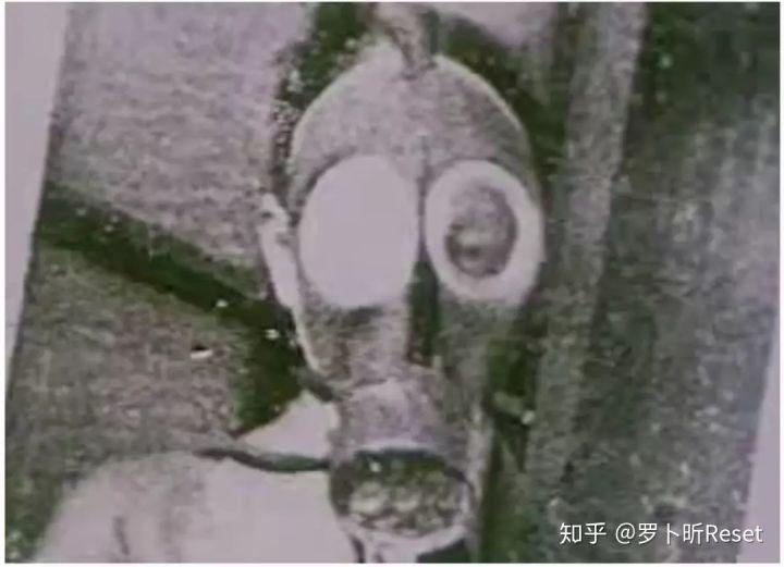 Tsinghua university masks